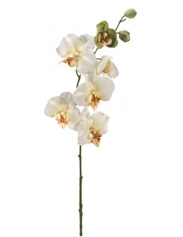 Gėlė Kreminė orchidėja 78cm