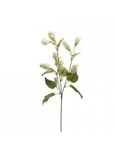 """Gėlė """"Beers Creema Mini"""" 60cm"""