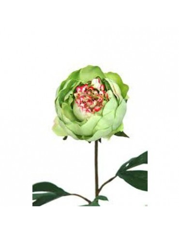 "Gėlė ""Žalias Bijūnas"" 80cm"