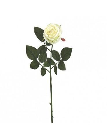 Gėlė Kreminė Rožė, 13x70
