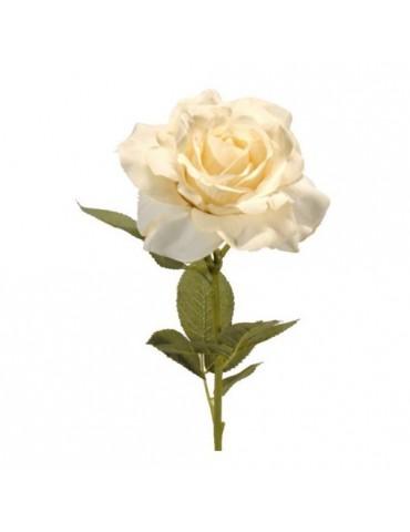 Gėlė Kreminė Rožė, 73cm