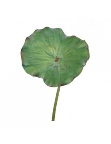 Gėlė Žalias Lotosas, 65cm