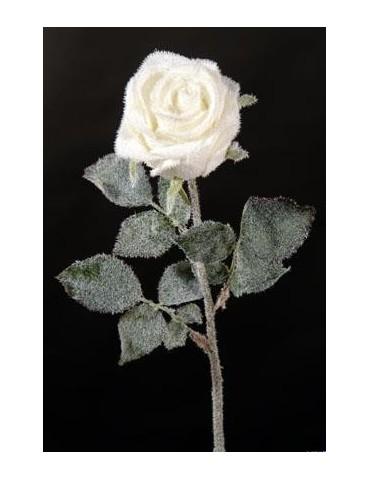 Gėlė balta apšerkšnijusi rožė 68 cm.