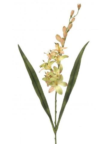Gėlė Montbretė 82 cm